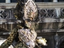 Carnival of Venice 2014: 24th February